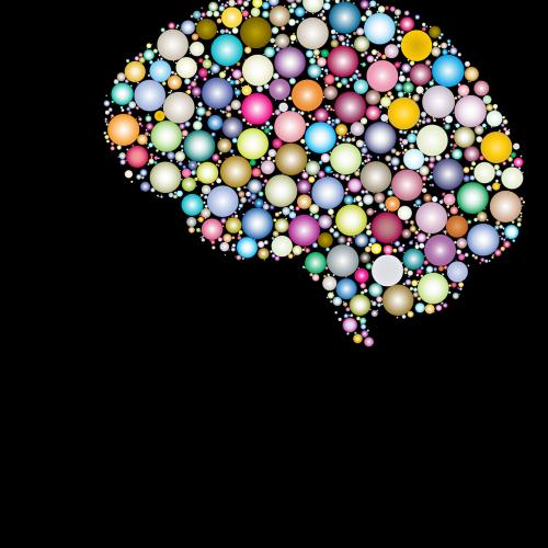 Jak zwiększyć możliwości mózgu?