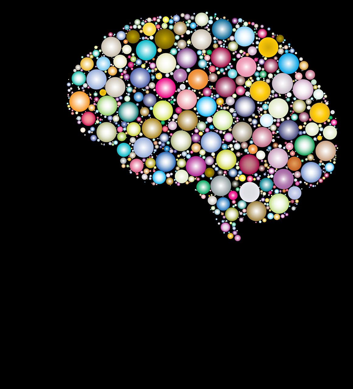 mózg pamięć i koncentracja